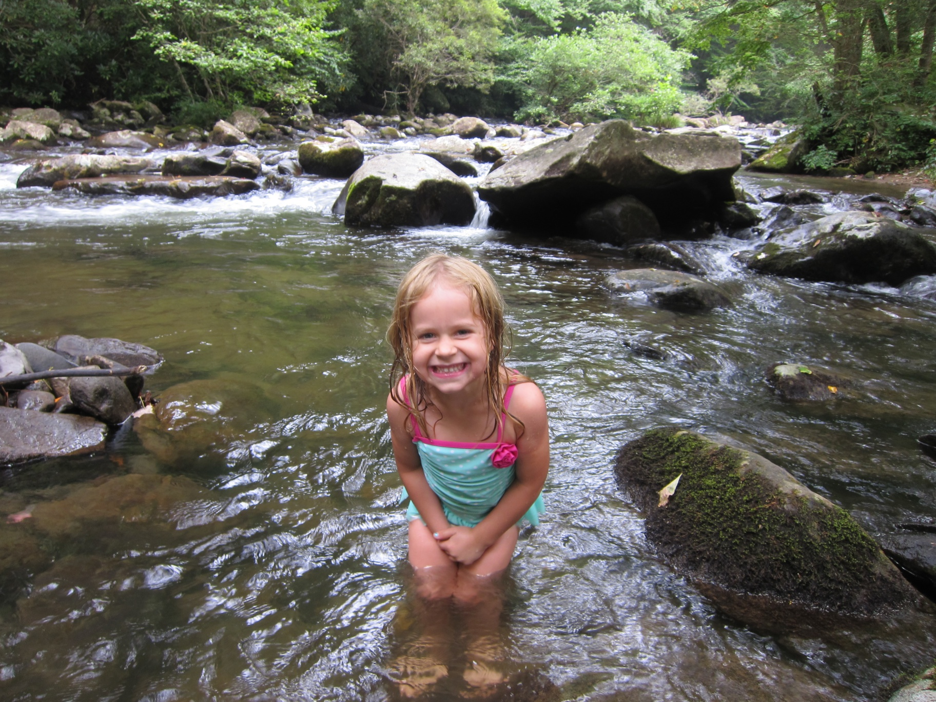Tellico River Cherokee National Forest Notes On Nora